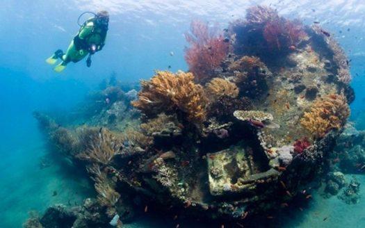 Villa Disewakan Bali - News - Pengalaman Snorkling di Bali